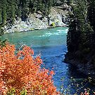 Snake River in the Fall by Loree McComb