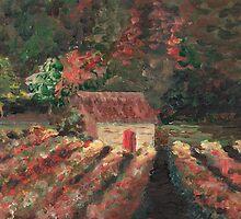 Provence Vineyard by Nadine Rippelmeyer