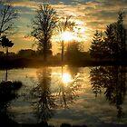 Morningsun Reflections in the Lake by ienemien