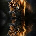 Beautiful Animal by Kymie