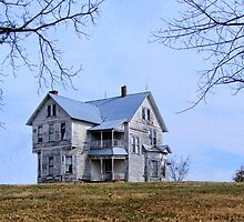 The Old House on  the Hill by barnsis