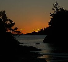 MacKenzie Beach at Sunset by mr-scruffles