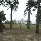 University of Houston as seen from MacGregor Park by Baba John Goodwin