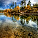 Fall Point by Bob Larson