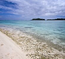Reef of Rarotonga by Jason Asher