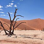 Deadvlei by Scott Carr