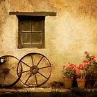 wheels & red geraniums by Steph Ball