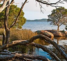 Inlet View 2 by pennyswork