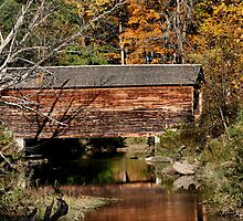 Hyde Hall Covered Bridge by djphoto