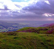 The View from Bank Top - Rosedale by Trevor Kersley