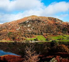 Overlooking Rydal Water by bubblebat