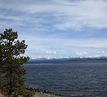Yellowstone Lake and Mountains by Frank Romeo