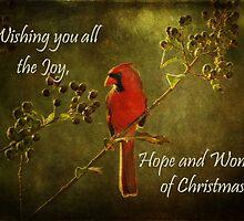 Christmas Card by Jonicool