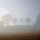 Morning Mist by Odille Esmonde-Morgan