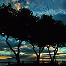 Lahaina Silhouette by Benjamin Padgett