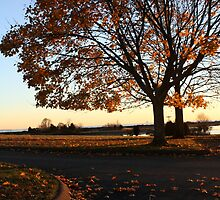Around the Bend - Waterford, Connecticut by Kristy-Lyn Faircloth