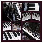 Black Beauty - Piano and Clarinet Collage by BlueMoonRose