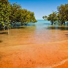 Blue Sky, Red Sand by aabzimaging