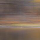 Pond Peninsula by Lynn Wiles