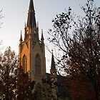 Basilica at Notre Dame University, South Bend, Indiana by BarbL