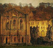 The Ruins Of Rievaulx Abbey by patrixpix