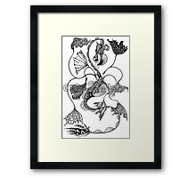 Vaux: Façade Framed Print