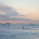 Cruiseship in mist by julie08