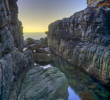 Sydney secret gorge by donnnnnny