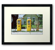 Route 66 - Illinois Gas Pumps Framed Print
