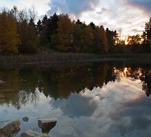 Sunset, Bourne Woods.  by Nick Atkin