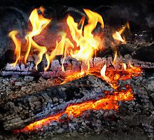 Chef - Stove - The Yule log  by Mike  Savad