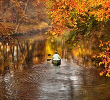 Autumn - Cranford, NJ - Exploring the unknown  by Mike  Savad