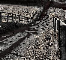 The Path To Longside by Jazzdenski