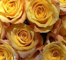 roses roses II - for my Mum by Floralynne