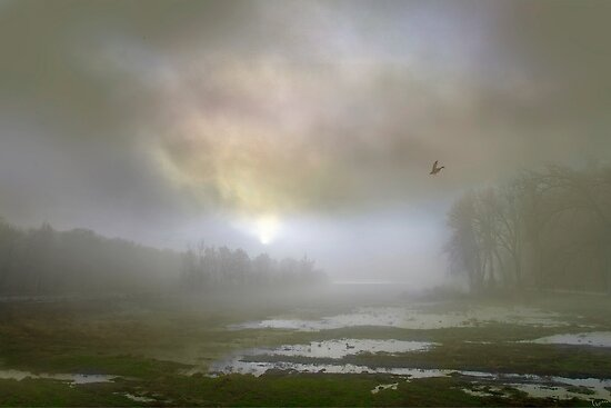 Mystical Morning by Igor Zenin