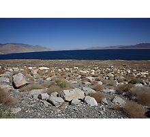 Walker Lake Photographic Print