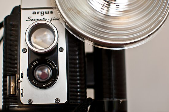 vintage argus 75 by tammy lee bradley
