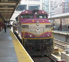 RARE Double Engine Commuter Rail by Eric Sanford