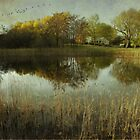 Country Pond  by KFuoco