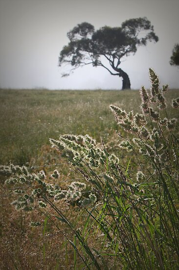 Tree and Grasses by Barb Leopold