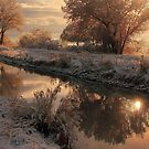 Winter Sun by ducilla