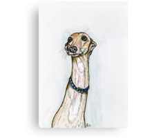 A Little Confused Canvas Print