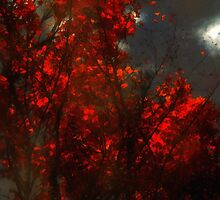 October Sky by RC deWinter