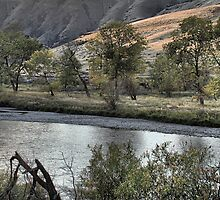 Yakima; Grasshopper Flats by Mike  Kinney