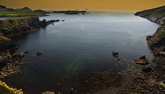 Ring Of Kerry, Skellig Island, County Kerry, Ireland by upthebanner