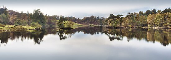 Tarn Hows, Cumbria, England by Bob Culshaw