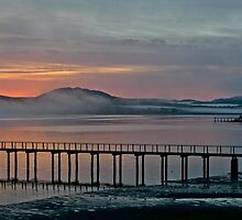 Tomales Bay, California Sunrise by Scott Johnson