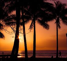 Waikiki Nights by Tony Walton