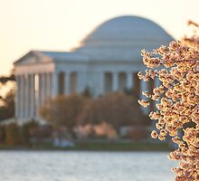 Springtime at the Jefferson by Lida Verner