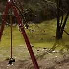 Swings in the park by Nicholas Roach